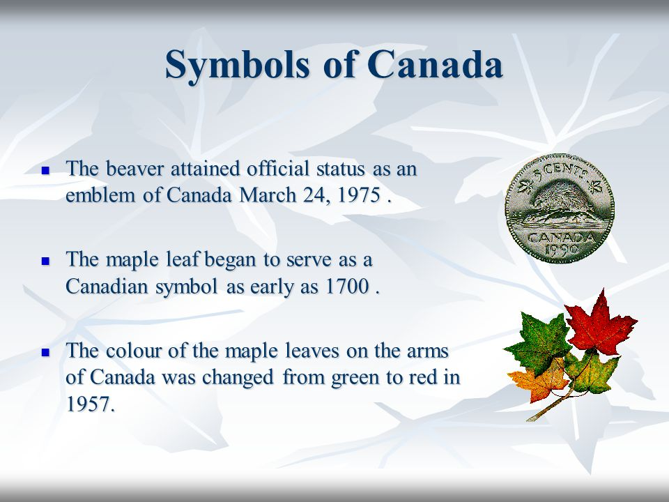 Symbols of Canada The beaver attained official status as an emblem of Canada March 24, 1975.