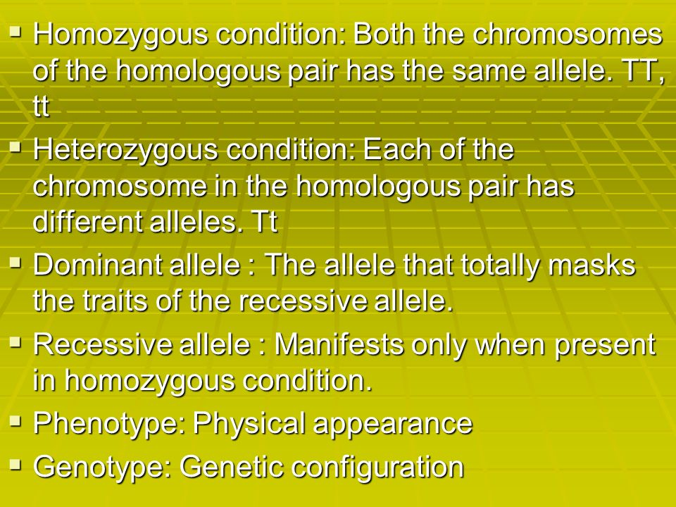 how does the homozygous condition differ from the heterozygous condition