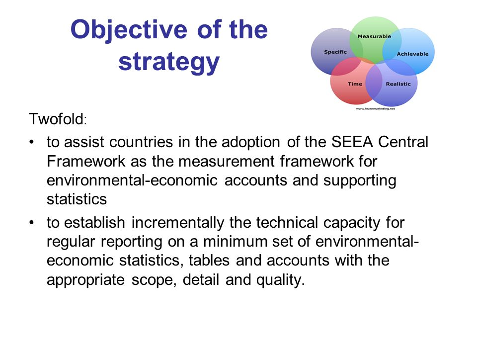 Objective of the strategy Twofold : to assist countries in the adoption of the SEEA Central Framework as the measurement framework for environmental-economic accounts and supporting statistics to establish incrementally the technical capacity for regular reporting on a minimum set of environmental- economic statistics, tables and accounts with the appropriate scope, detail and quality.