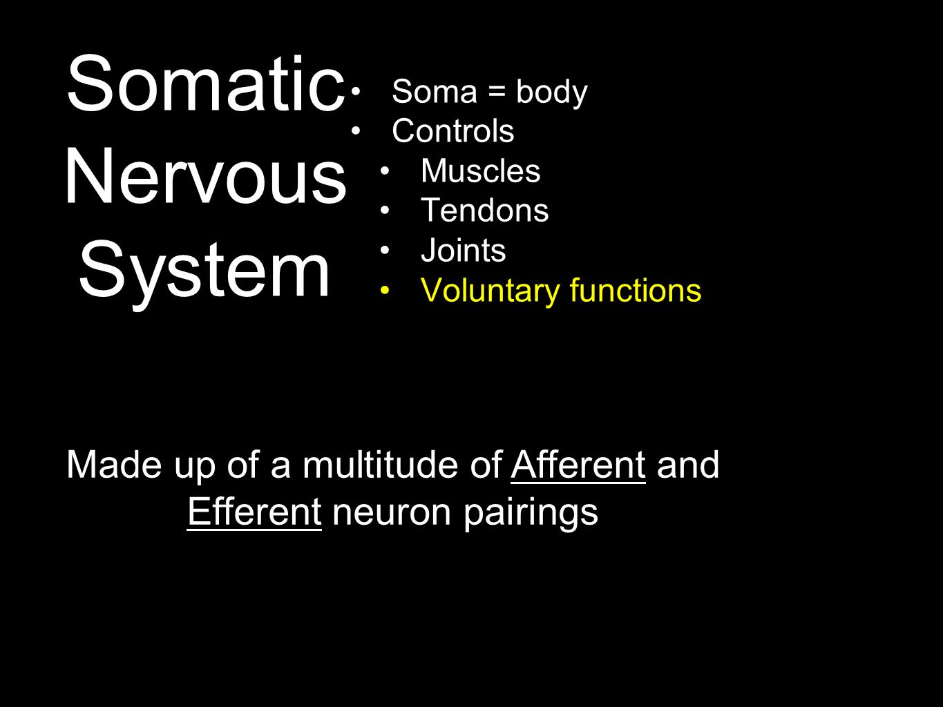 Somatic Nervous System Soma = body Controls Muscles Tendons Joints Voluntary functions Made up of a multitude of Afferent and Efferent neuron pairings
