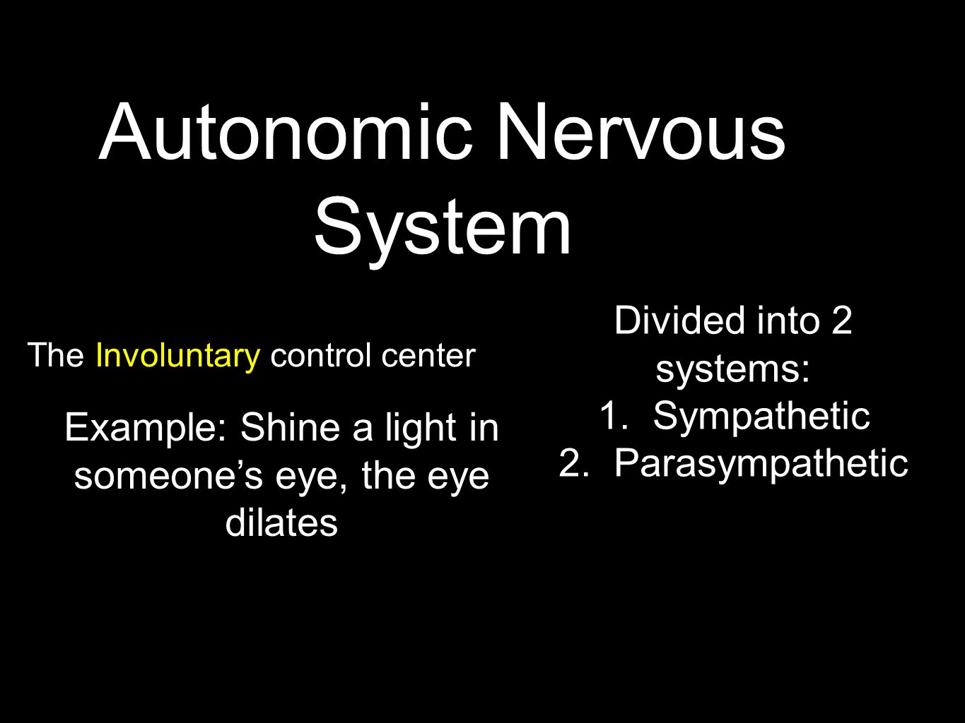 Autonomic Nervous System The Involuntary control center Example: Shine a light in someone's eye, the eye dilates Divided into 2 systems: 1.Sympathetic 2.Parasympathetic