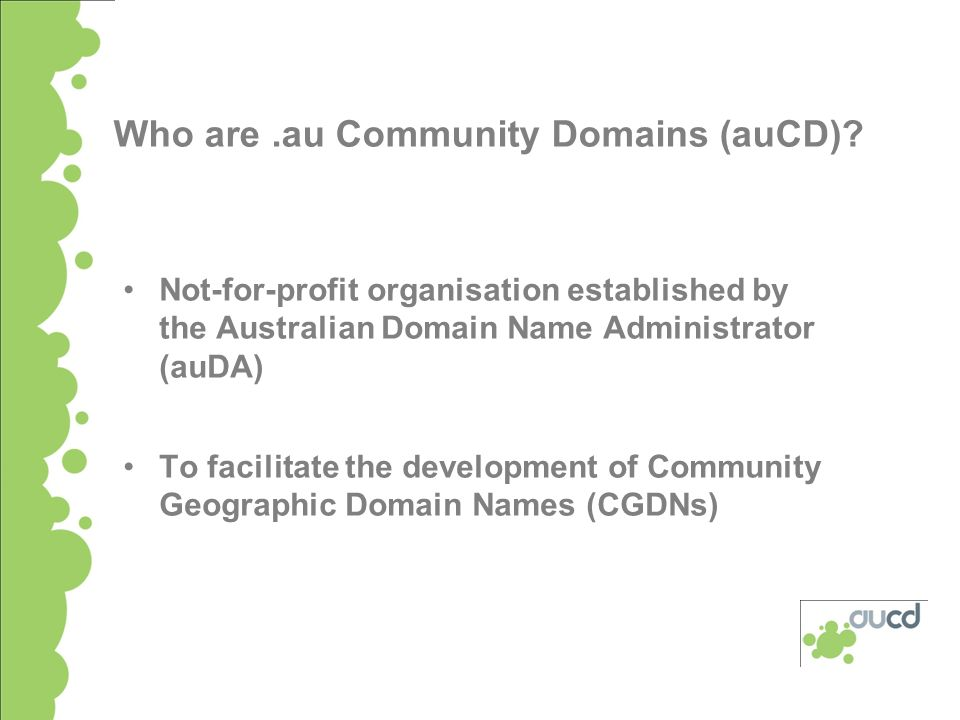 Using Community Geographic Domain Names for Community