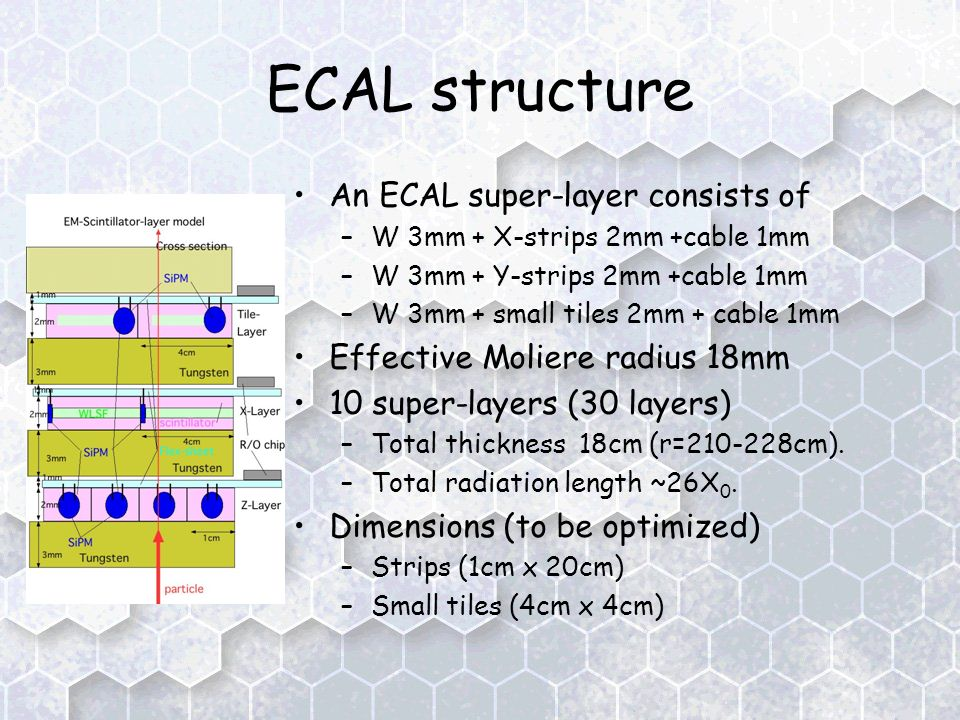 ECAL structure An ECAL super-layer consists of –W 3mm + X-strips 2mm +cable 1mm –W 3mm + Y-strips 2mm +cable 1mm –W 3mm + small tiles 2mm + cable 1mm Effective Moliere radius 18mm 10 super-layers (30 layers) –Total thickness 18cm (r= cm).