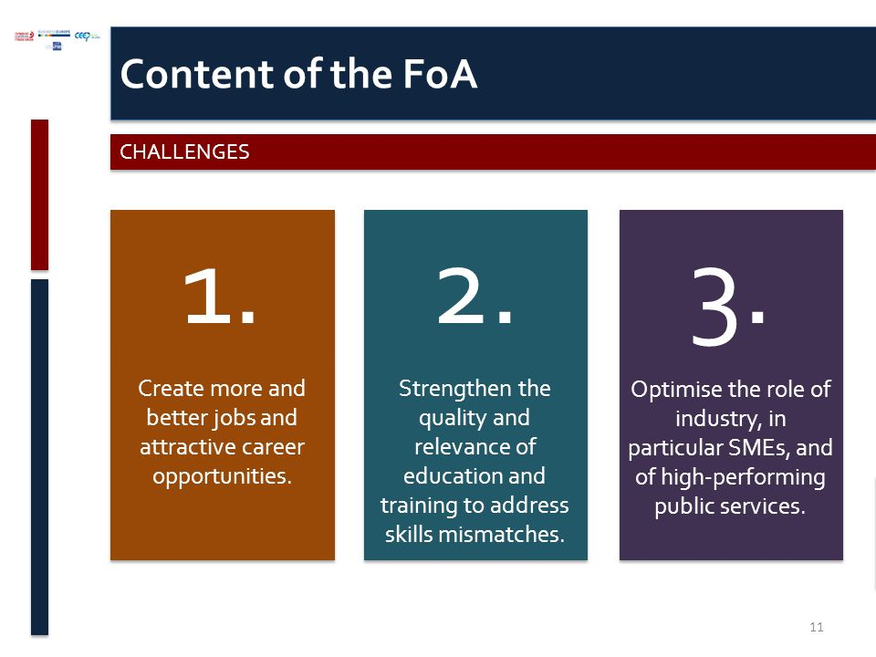 Content of the FoA CHALLENGES
