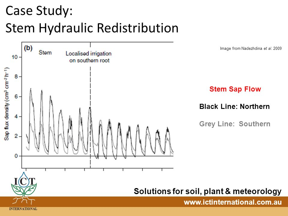 INTERNATIONAL Solutions for soil, plant & meteorology   Case Study: Stem Hydraulic Redistribution Stem Sap Flow Black Line: Northern Grey Line: Southern Image from Nadezhdina et al.