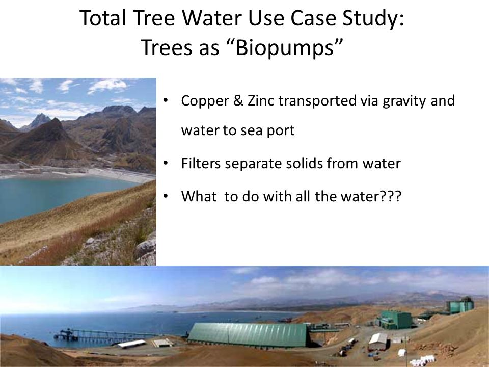 INTERNATIONAL Solutions for soil, plant & meteorology   Copper & Zinc transported via gravity and water to sea port Filters separate solids from water What to do with all the water .
