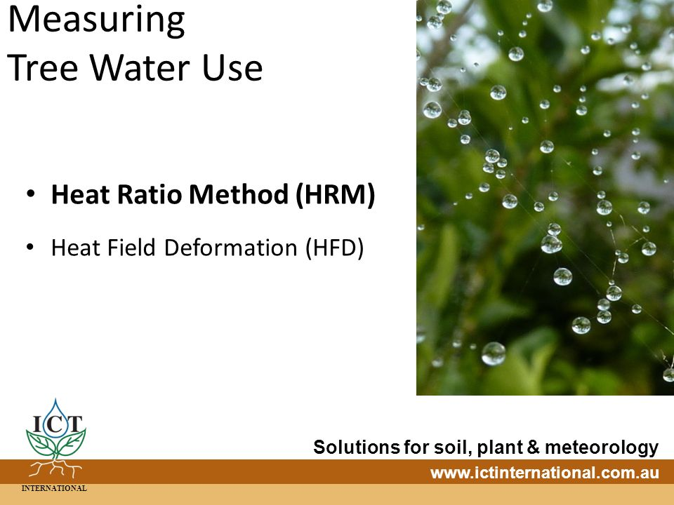 INTERNATIONAL Solutions for soil, plant & meteorology   Measuring Tree Water Use Heat Ratio Method (HRM) Heat Field Deformation (HFD)