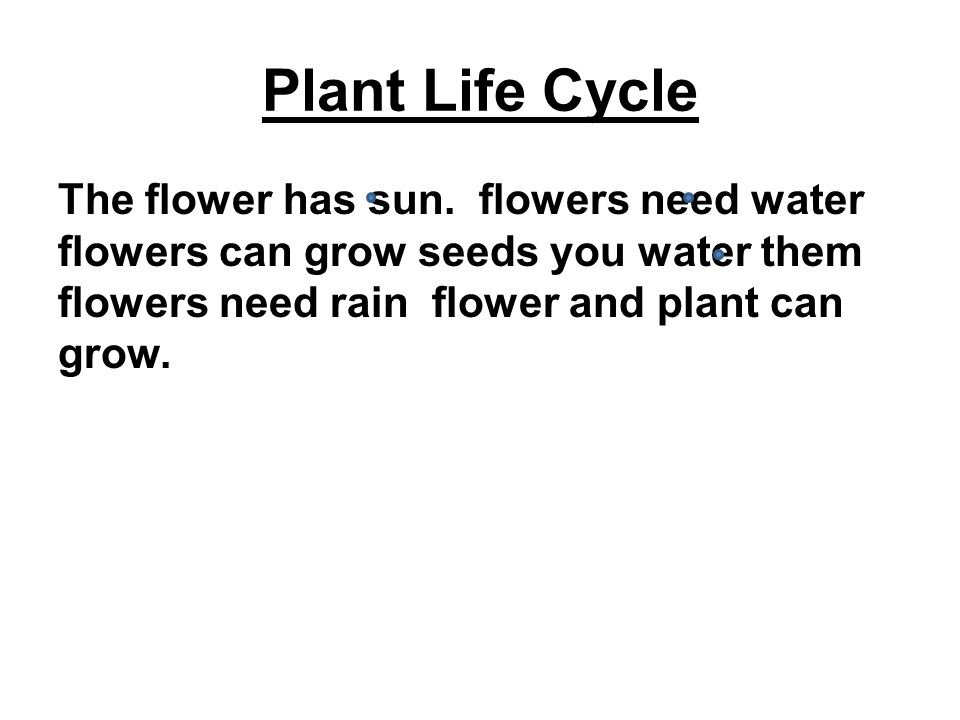 Plant Life Cycle The flower has sun.