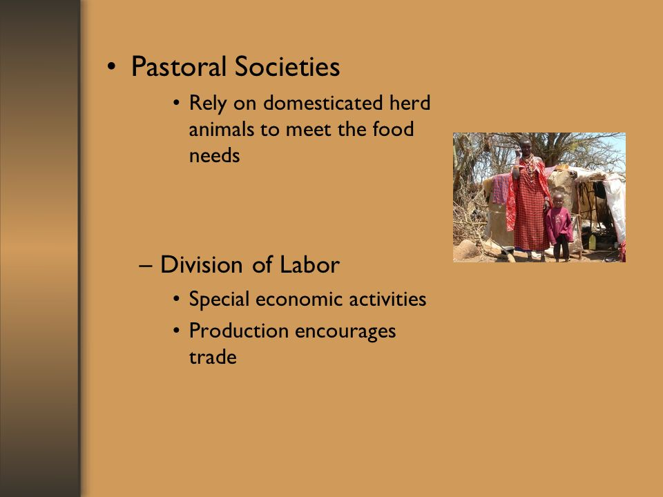 Pastoral Societies Rely on domesticated herd animals to meet the food needs –Division of Labor Special economic activities Production encourages trade