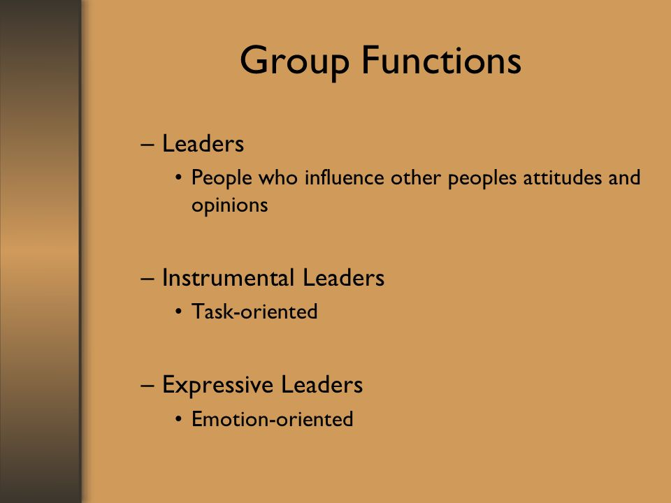 Group Functions –Leaders People who influence other peoples attitudes and opinions –Instrumental Leaders Task-oriented –Expressive Leaders Emotion-oriented