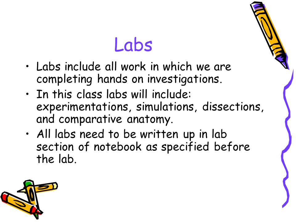 Labs Labs include all work in which we are completing hands on investigations.