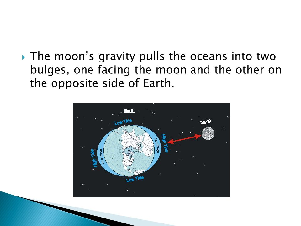  The moon's gravity pulls the oceans into two bulges, one facing the moon and the other on the opposite side of Earth.