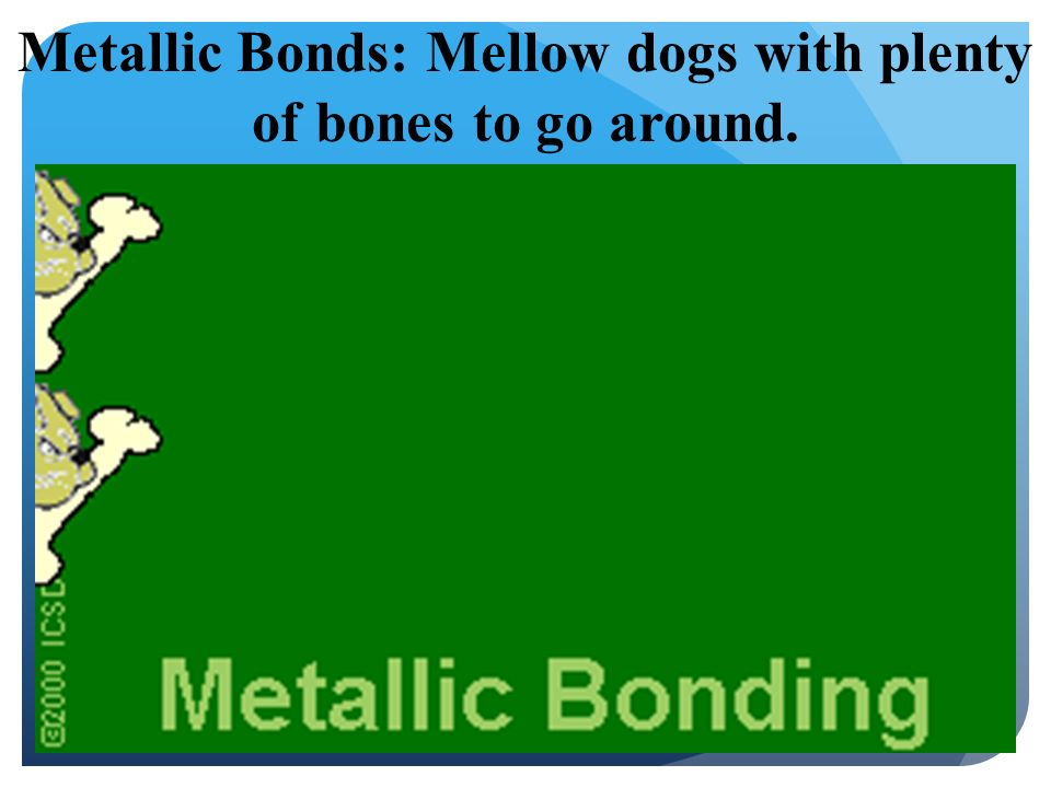 Metallic Bonds: Mellow dogs with plenty of bones to go around.