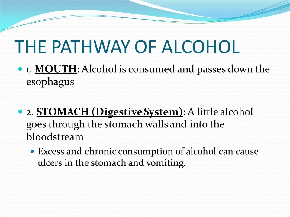THE PATHWAY OF ALCOHOL 1. MOUTH: Alcohol is consumed and passes down the esophagus 2.