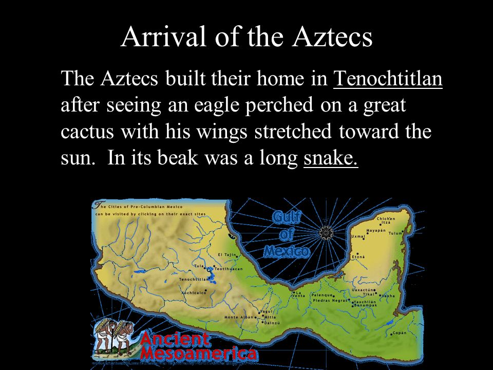 Arrival of the Aztecs The Aztecs built their home in Tenochtitlan after seeing an eagle perched on a great cactus with his wings stretched toward the sun.