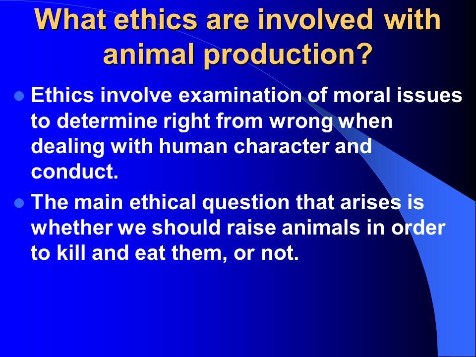welfare ethics