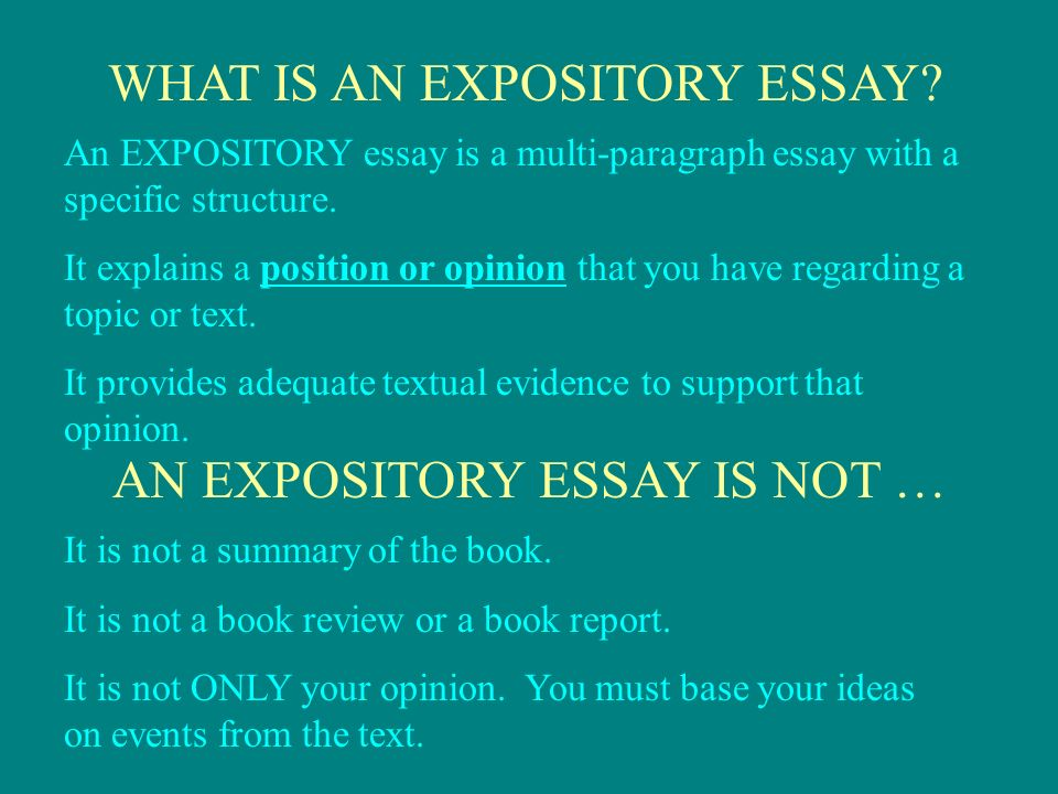 Example Of Essay Proposal How To Write An Expository Essay  How To Write A High School Application Essay also English Essay Websites Today We Are Going To Learn How To Write An Expository Essay  Example Of An Essay Paper