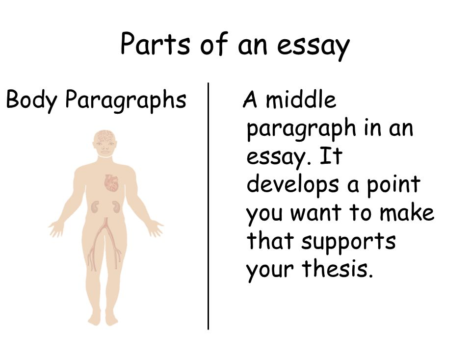 Parts of an Essay IntroductionThe first paragraph of an essay.