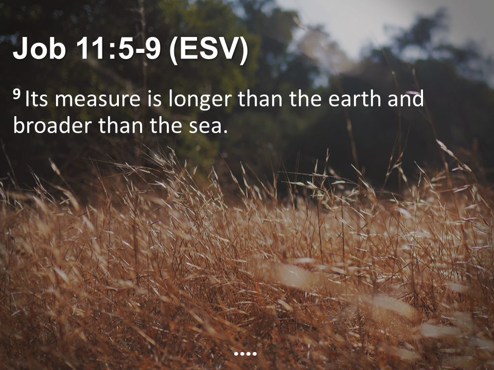 Job 11:5-9 (ESV) 9 Its measure is longer than the earth and broader than the sea.