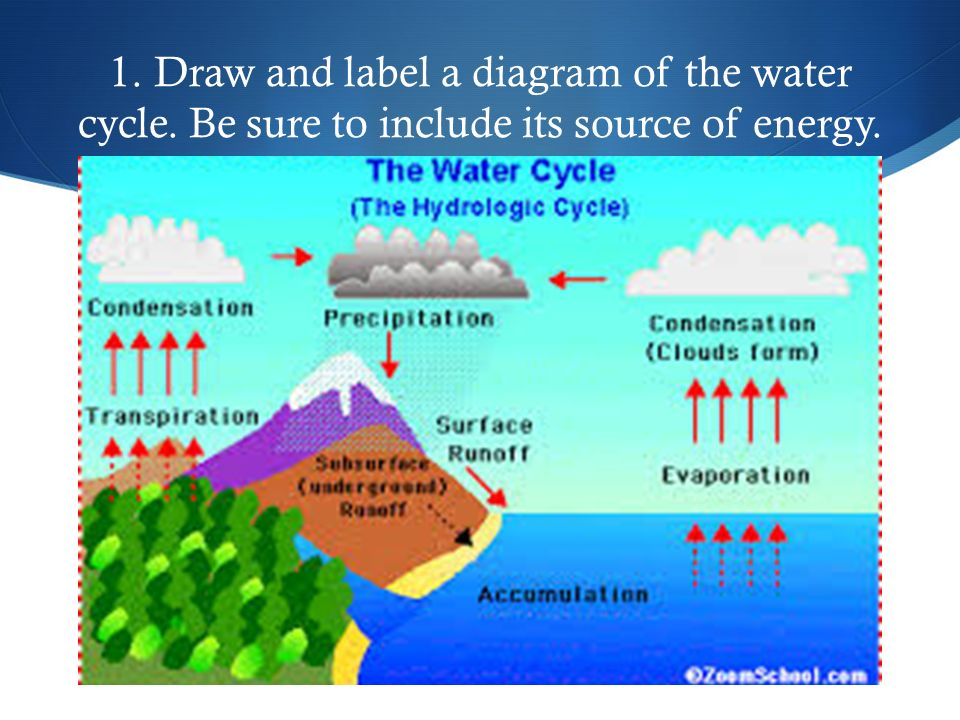 Life science review by sydney george 1 draw and label a diagram draw and label a diagram of the water cycle be sure to include its source of energy ccuart Choice Image