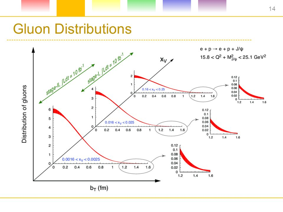 Gluon Distributions 14
