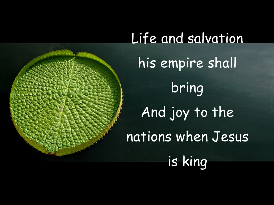 Life and salvation his empire shall bring And joy to the nations when Jesus is king