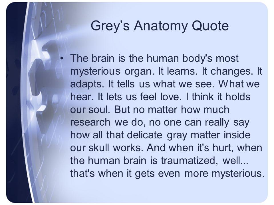 Neuro – A & P, Assessment, Diagnostics Chapter 41 Spring News News ...