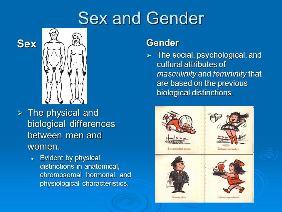 Androphilia And Gynephilia