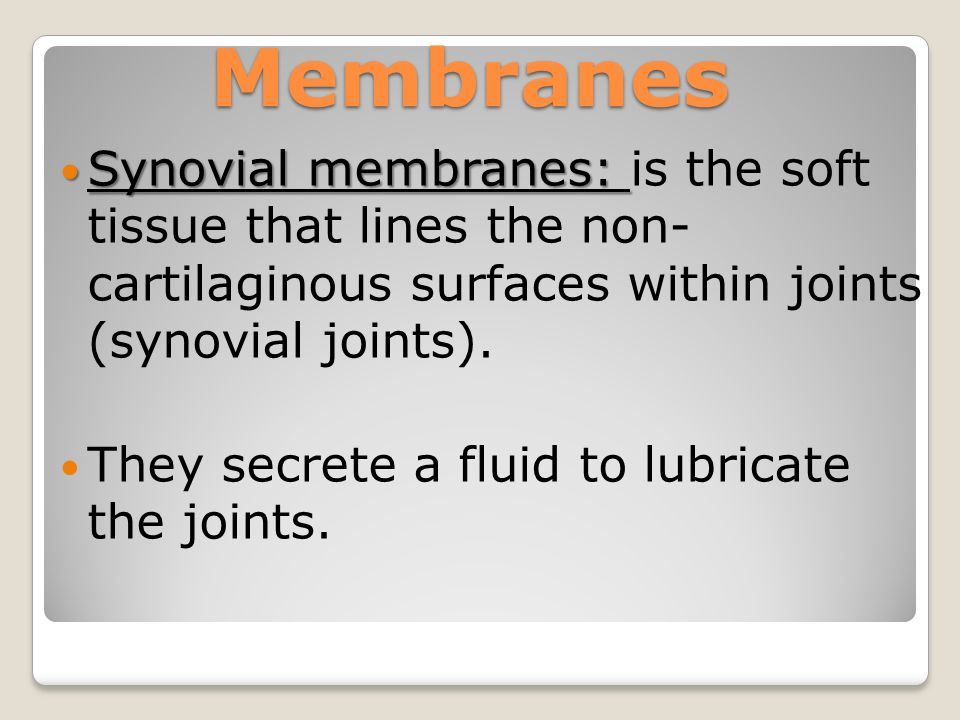 Synovial membranes: Synovial membranes: is the soft tissue that lines the non- cartilaginous surfaces within joints (synovial joints).
