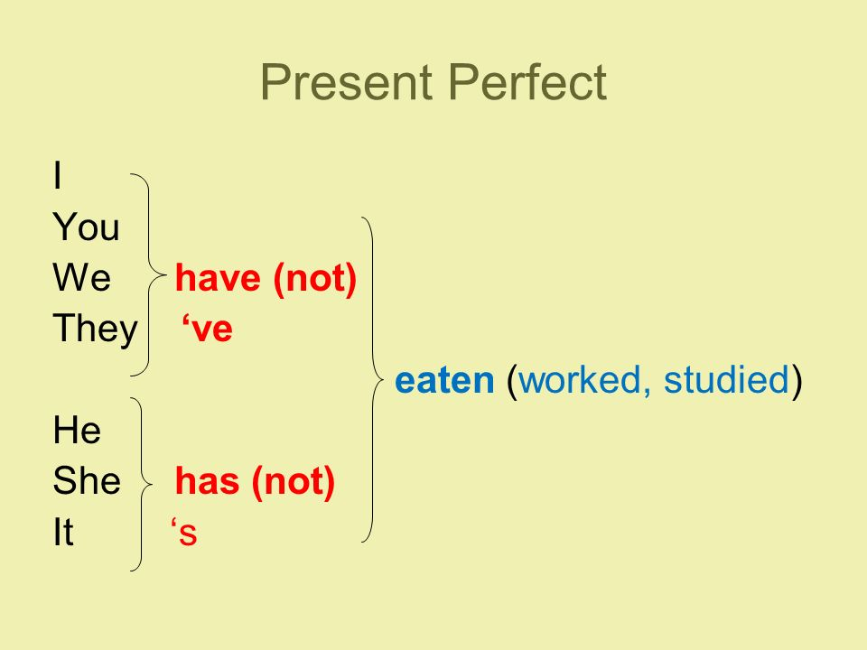 Present Perfect I You We have (not) They 've eaten (worked, studied) He She has (not) It 's