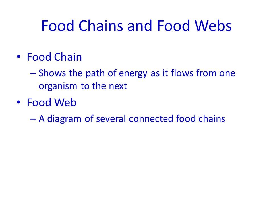 Food Chains and Food Webs Food Chain – Shows the path of energy as it flows from one organism to the next Food Web – A diagram of several connected food chains