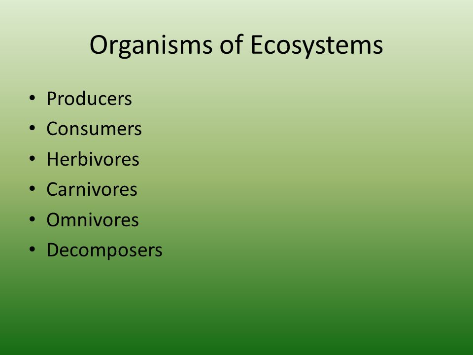 Organisms of Ecosystems Producers Consumers Herbivores Carnivores Omnivores Decomposers