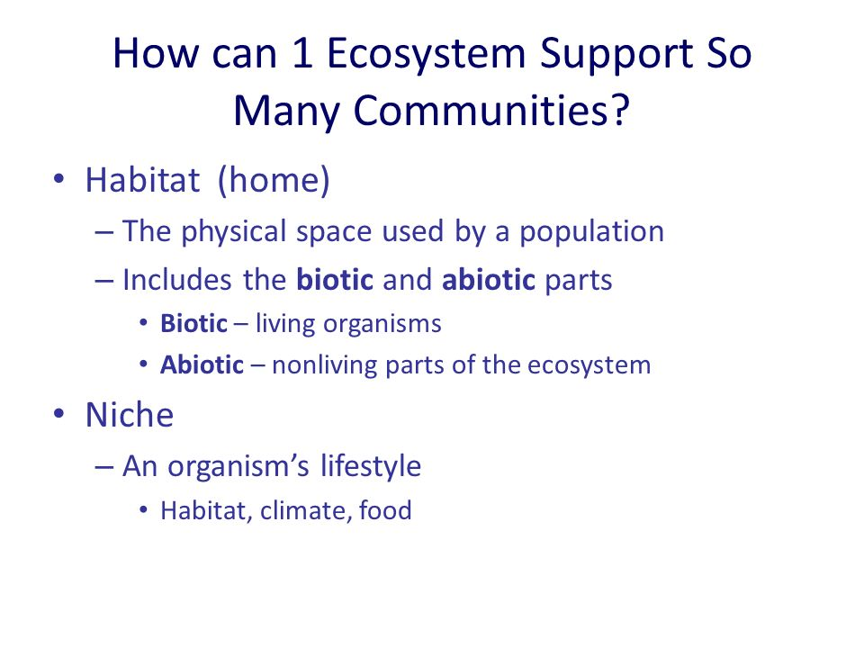 How can 1 Ecosystem Support So Many Communities.