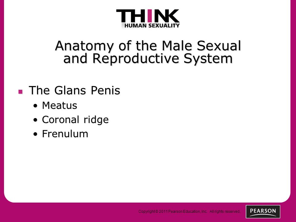 Gliding mechanism in sex
