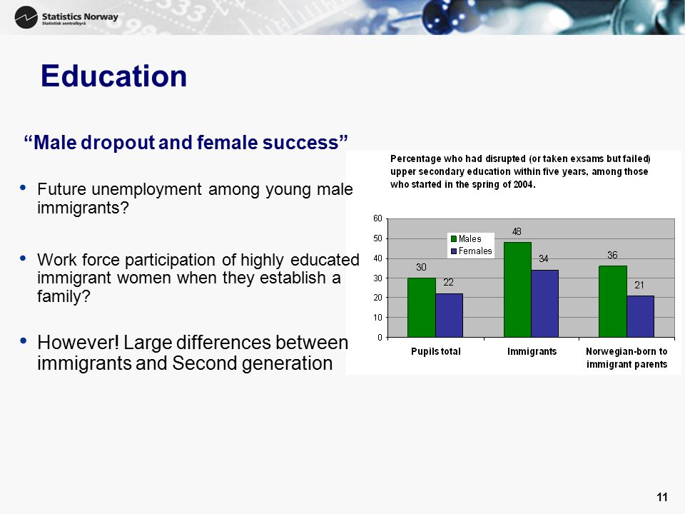 11 Education Male dropout and female success Future unemployment among young male immigrants.