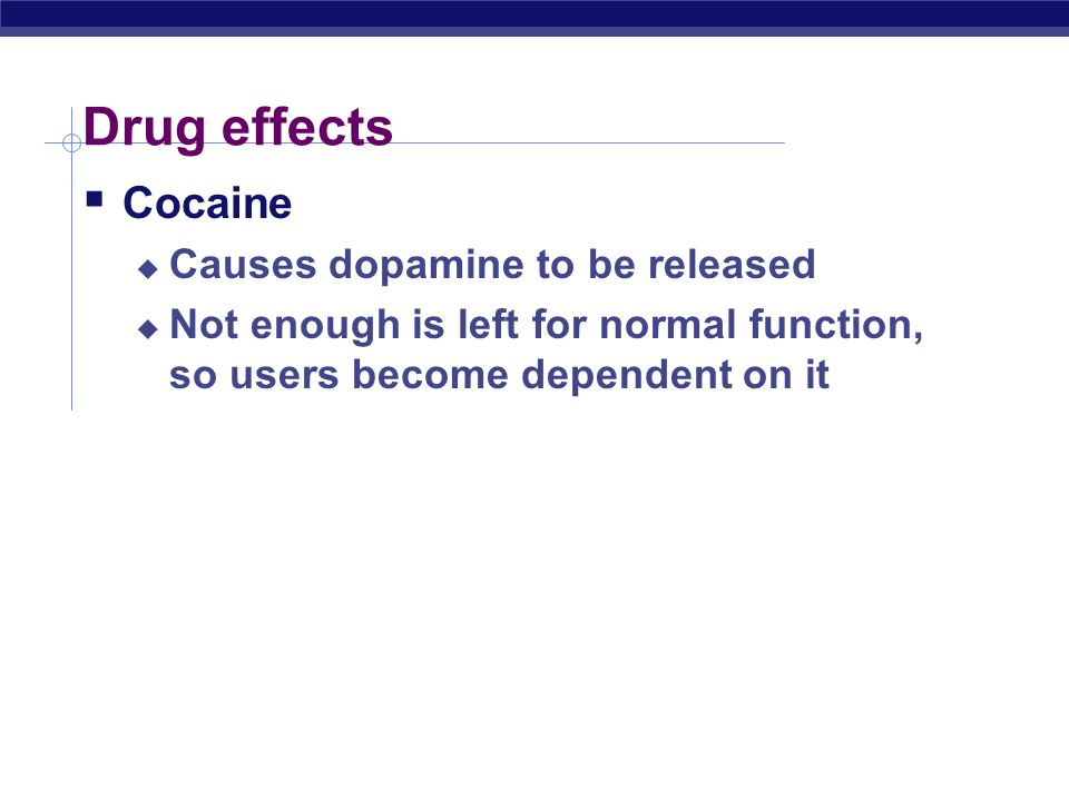 Drug effects  Hallucinogens  LSD  PCP  Interfere with neurotransmitters in brain