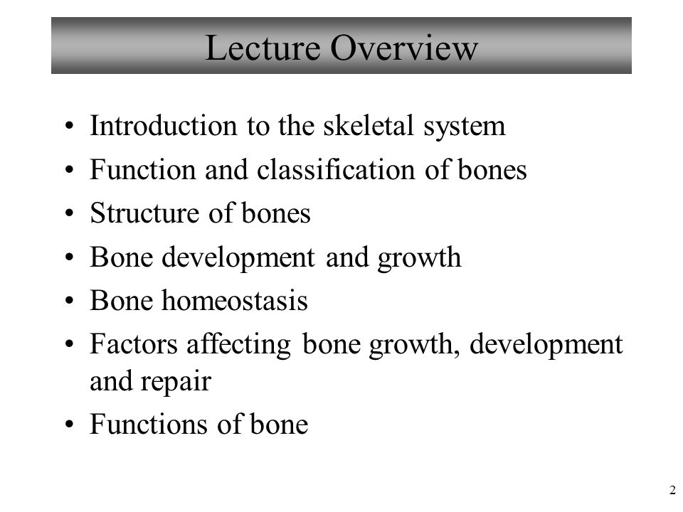 1 Chapter 6 Bones and Skeletal Tissue Lecture 13 Figure: © 1998 ...