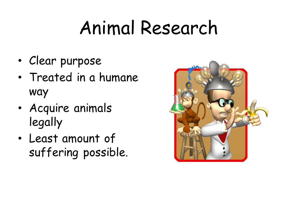 Animal Research Clear purpose Treated in a humane way Acquire animals legally Least amount of suffering possible.