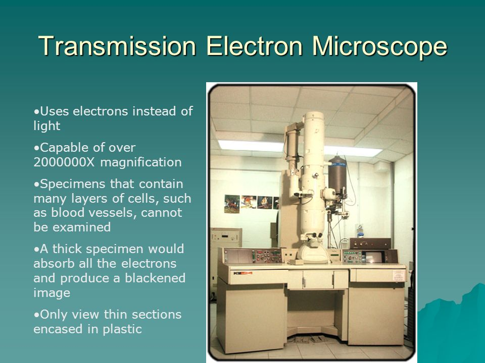 Transmission Electron Microscope Uses electrons instead of light Capable of over X magnification Specimens that contain many layers of cells, such as blood vessels, cannot be examined A thick specimen would absorb all the electrons and produce a blackened image Only view thin sections encased in plastic