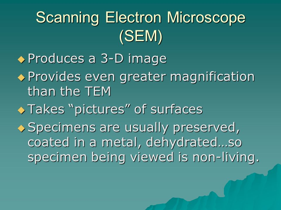 Scanning Electron Microscope (SEM)  Produces a 3-D image  Provides even greater magnification than the TEM  Takes pictures of surfaces  Specimens are usually preserved, coated in a metal, dehydrated…so specimen being viewed is non-living.