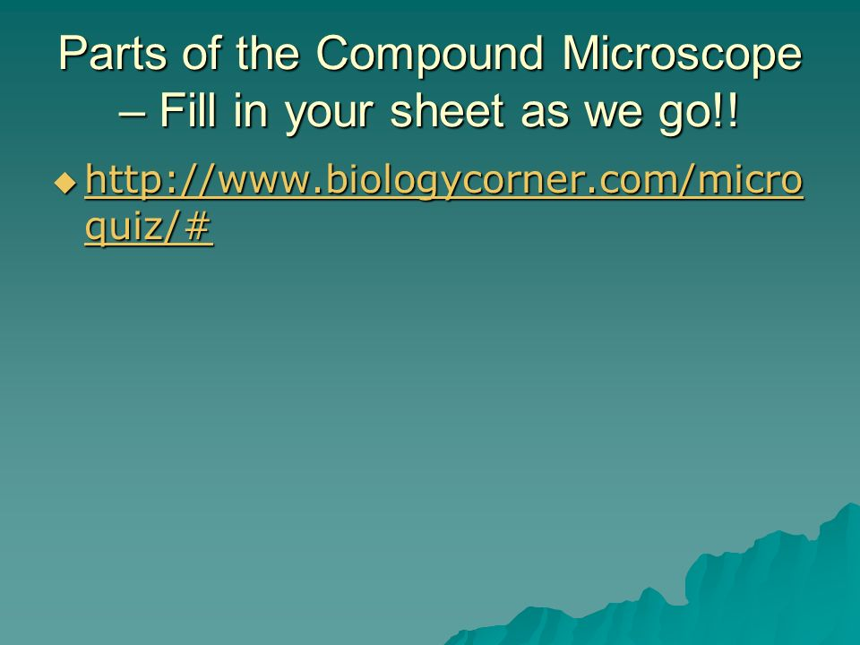 Parts of the Compound Microscope – Fill in your sheet as we go!.