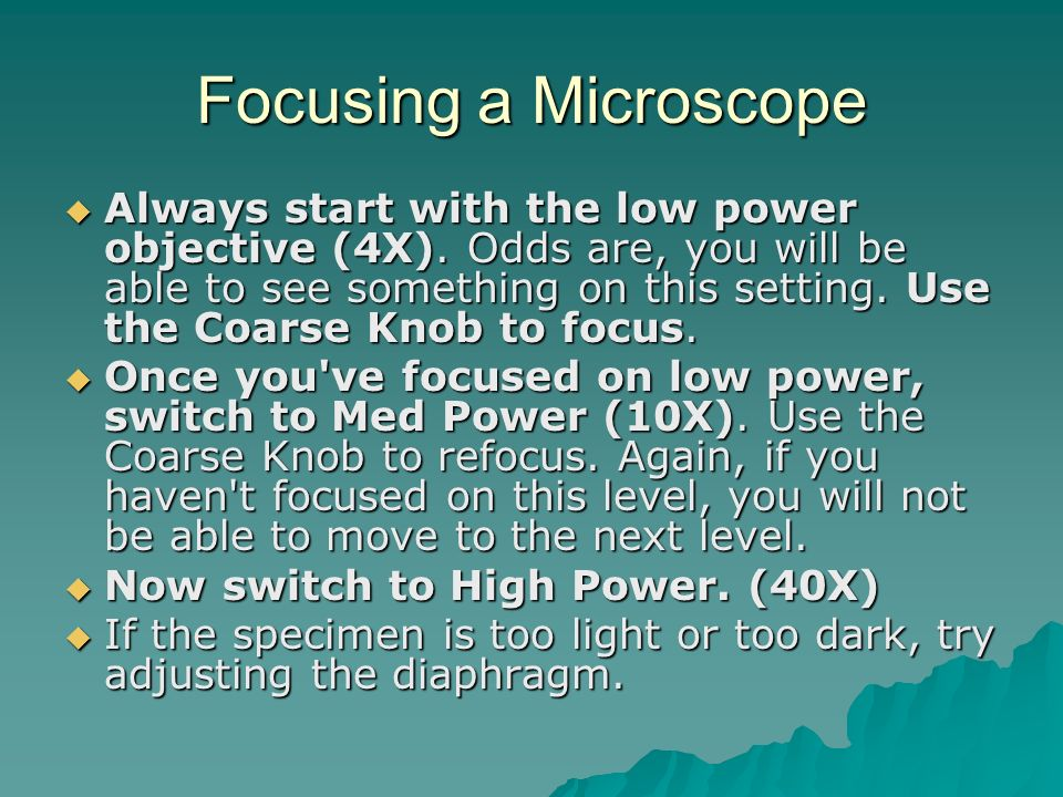 Focusing a Microscope  Always start with the low power objective (4X).