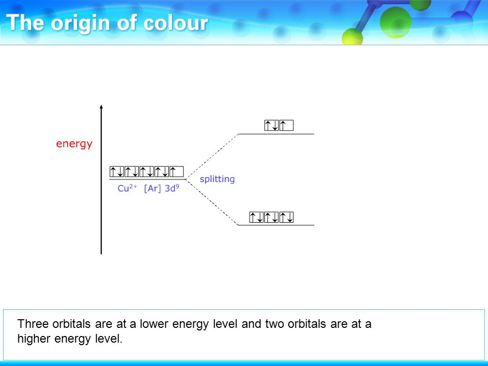 Three orbitals are at a lower energy level and two orbitals are at a higher energy level.