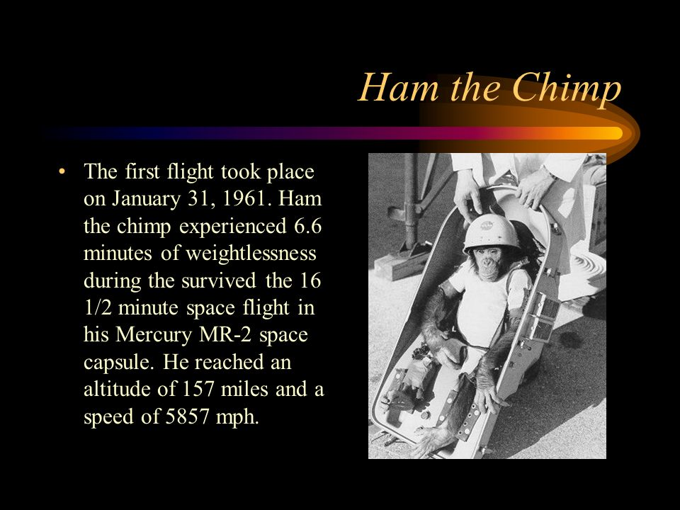 Ham the Chimp The first flight took place on January 31, 1961.