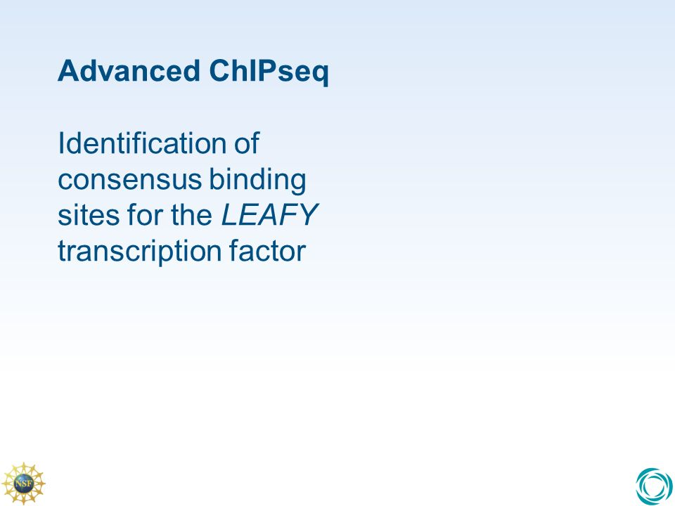 Advanced ChIPseq Identification of consensus binding sites for the LEAFY transcription factor