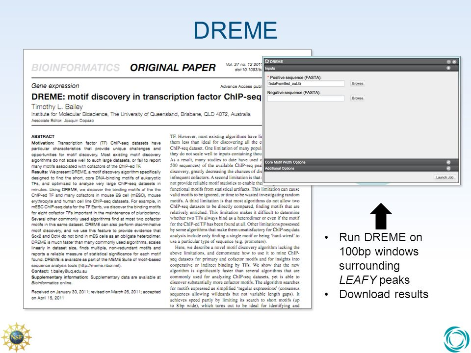 DREME Run DREME on 100bp windows surrounding LEAFY peaks Download results