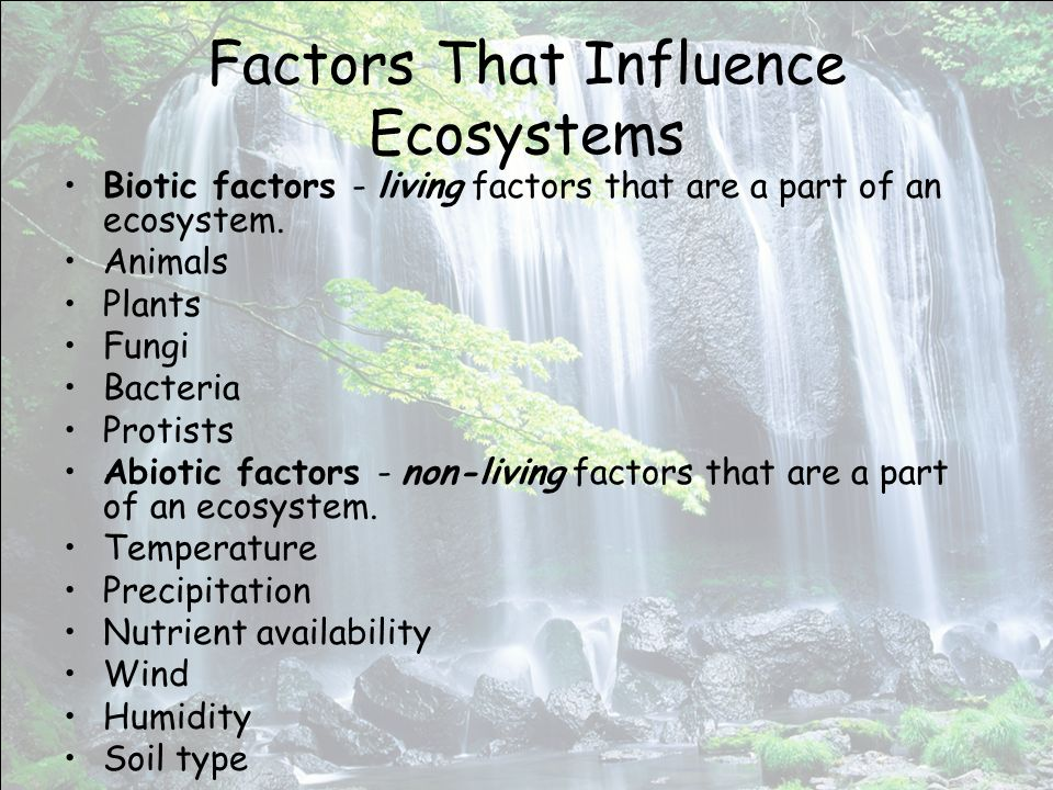 Factors That Influence Ecosystems Biotic factors - living factors that are a part of an ecosystem.