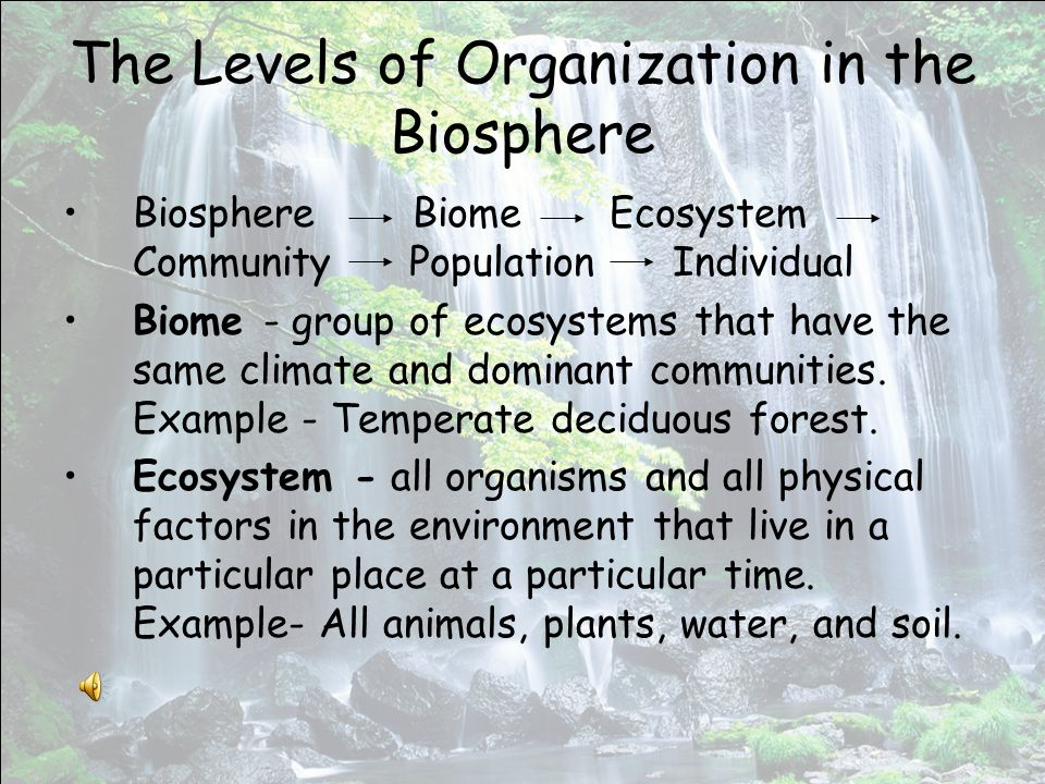 The Levels of Organization in the Biosphere Biosphere Biome Ecosystem Community Population Individual Biome - group of ecosystems that have the same climate and dominant communities.