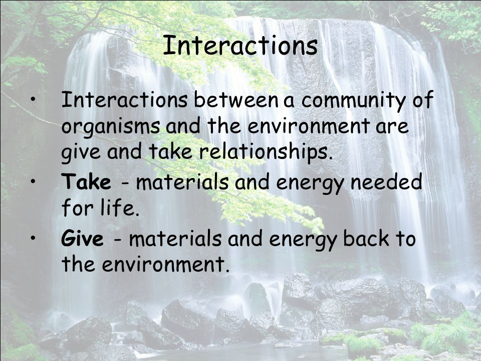Interactions Interactions between a community of organisms and the environment are give and take relationships.