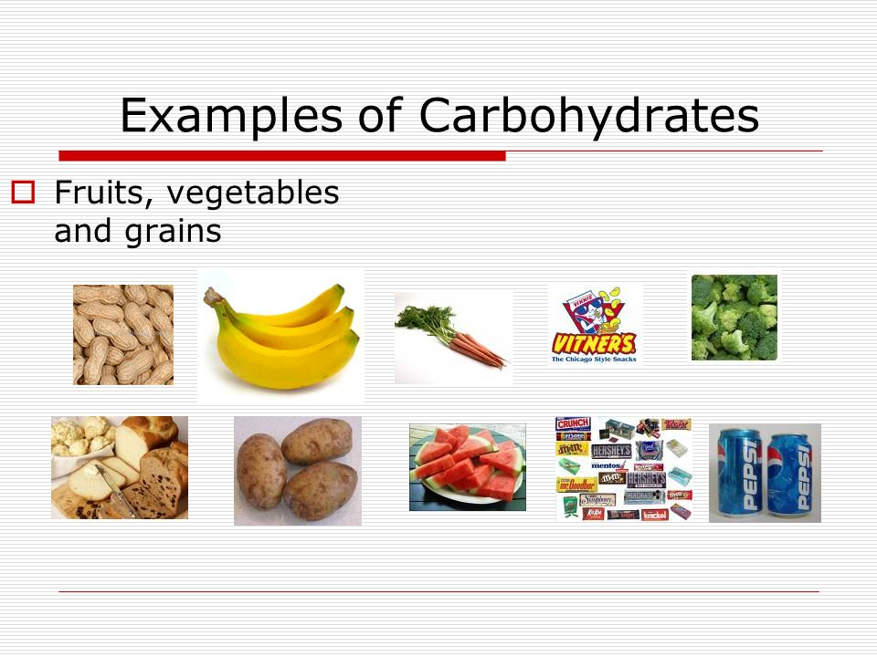 your body's need for food carbohydrates, lipids, proteins and